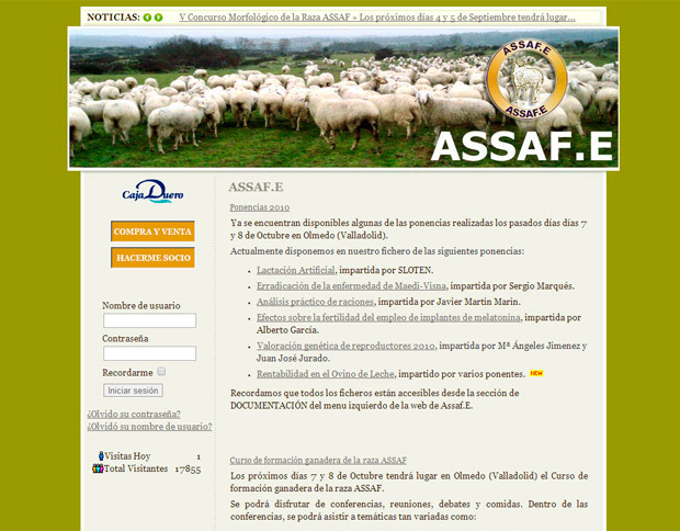 ✨ ASSAF.E