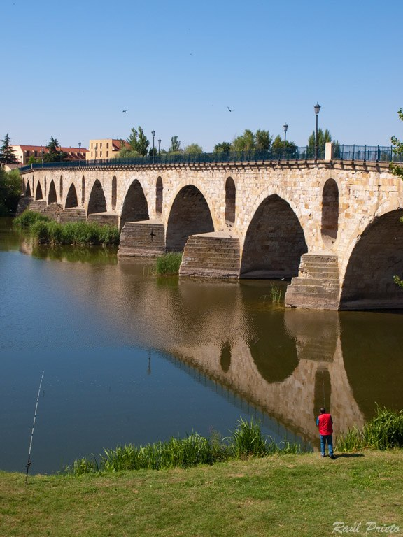 Puente Romano Zamora